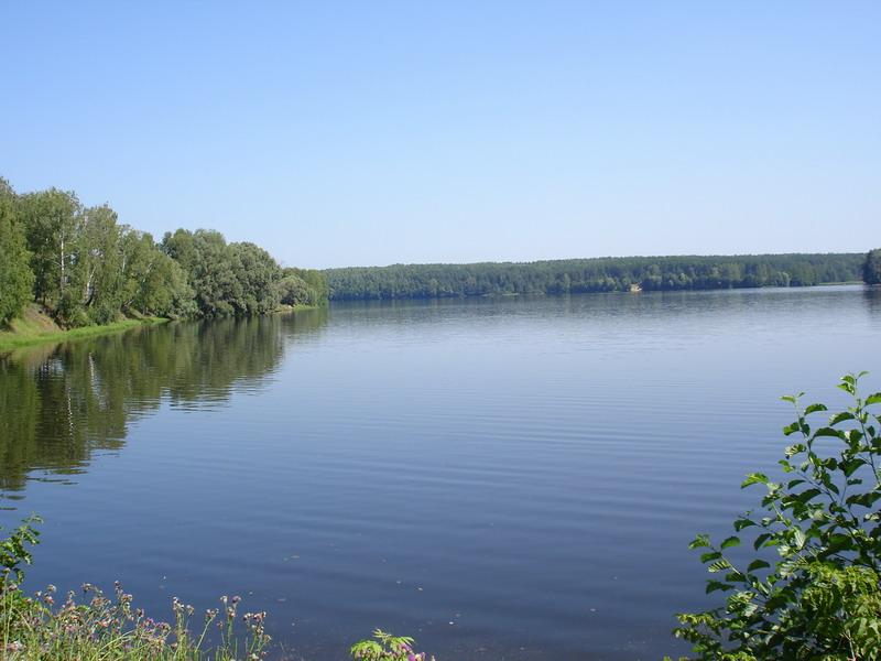 касимов и окрестности рыбалка